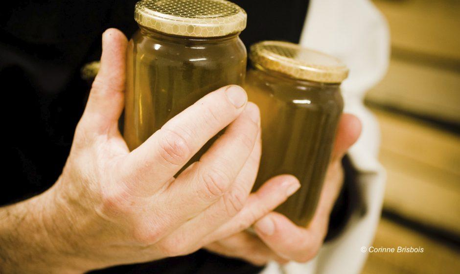 Frere Jean Baptiste a la frabrication du miel.vie quotidienne des moines a l'Abbaye Notre Dame de Senanque.